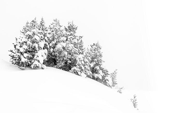 Invierno en Larra Belagua