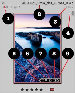 Distintos iconos que aparecen en una cuadrícula de Lightroom
