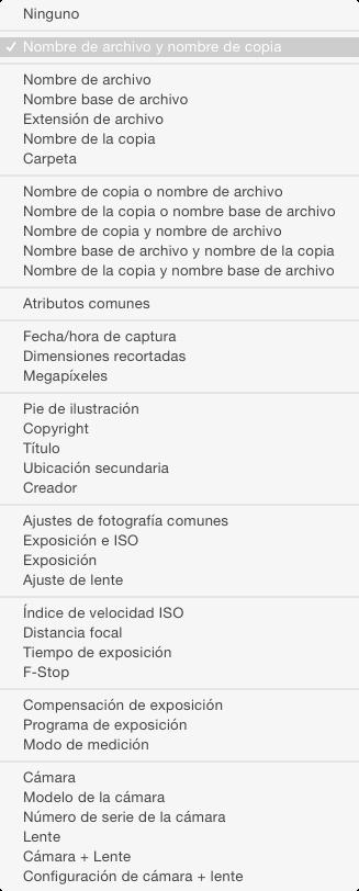 Opciones de información a mostrar en el módulo Lupa o Revelado