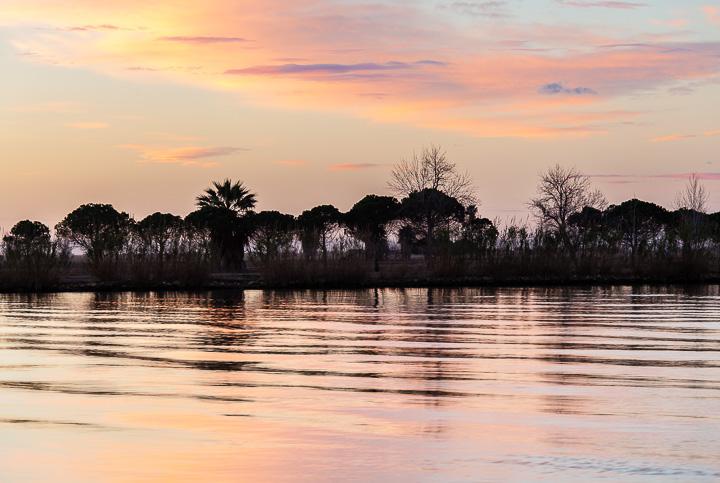 Amanece en el Ebro