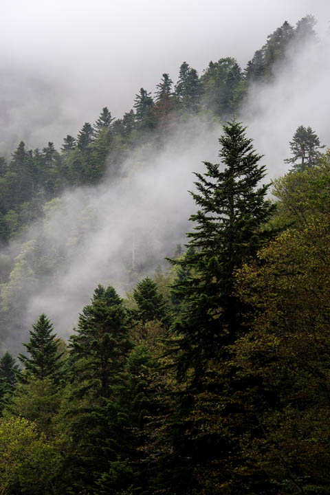 Nieblas en Artiga de Lin