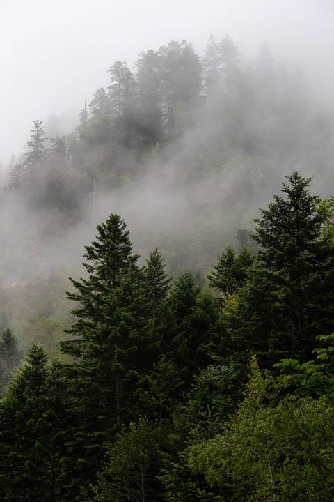 Nieblas en Val dAran
